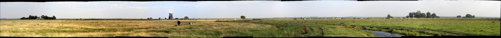 view of windmills, horses and cattle in a very very wide panorama view