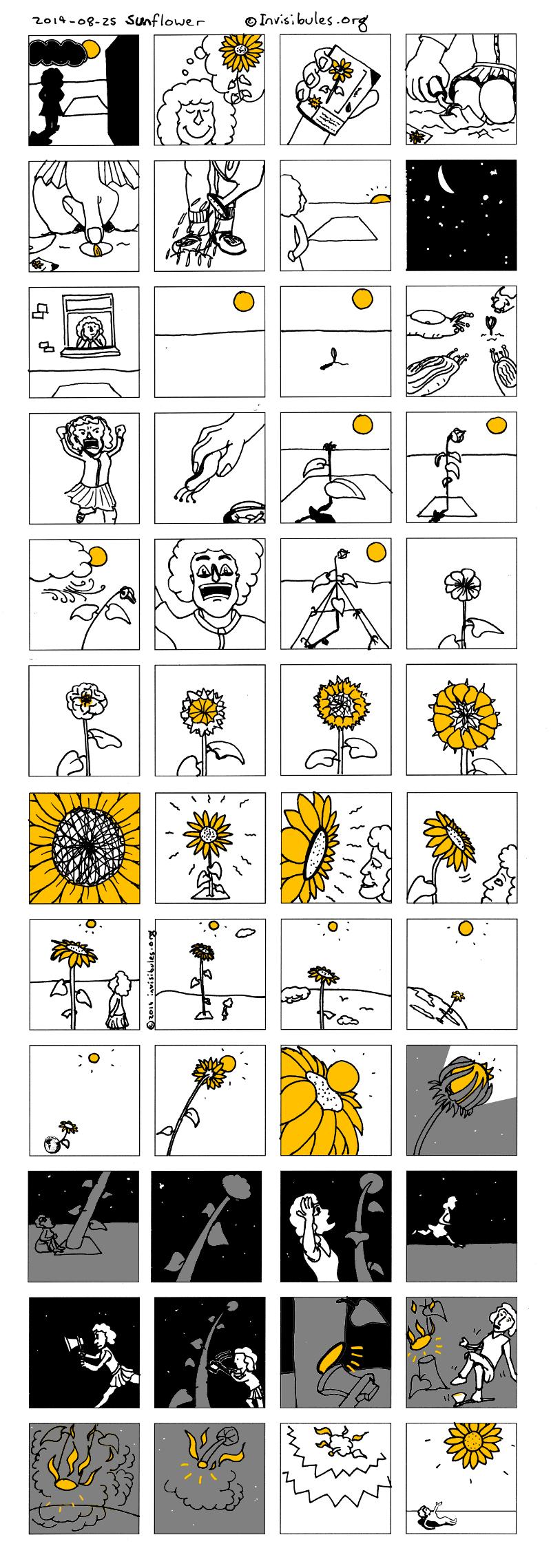 2014-08-28 Sunflower