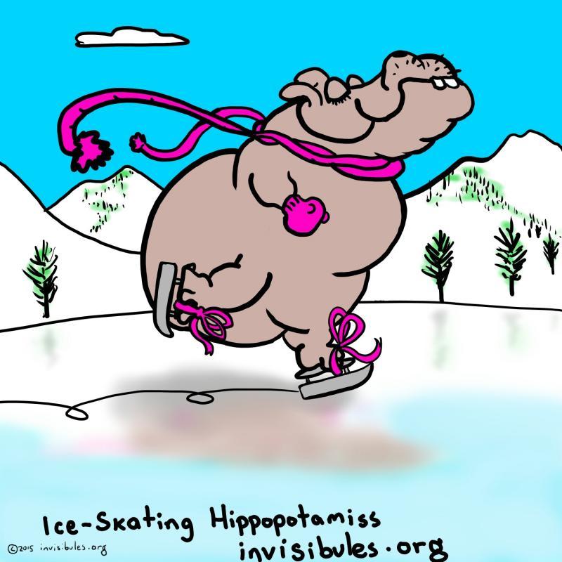 2015-03-21 Hippo skating