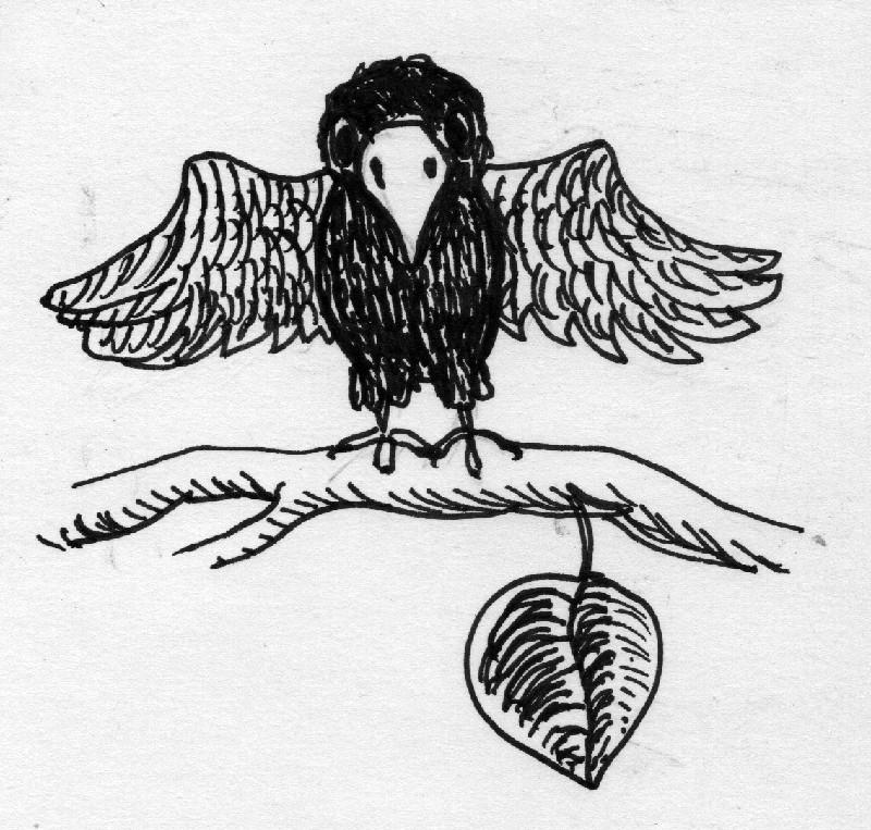 2015-05-08 Black Crow