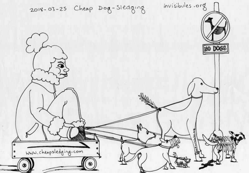 218-03-25 Cheap dog-sledging