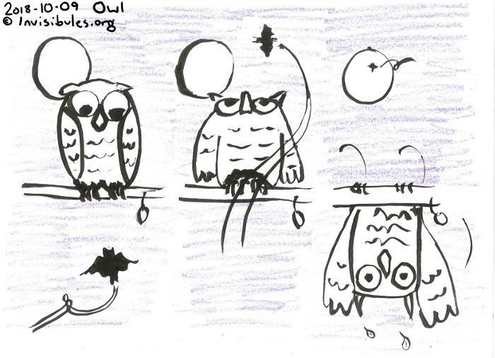 2018-10-09 Owl