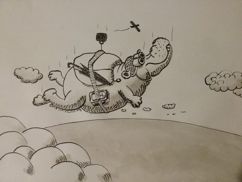 2018-10-16 Skydiving Hippo